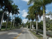 fort myers pictures 057